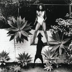 HELMUT NEWTON | RAQUEL WELCH IN HER BACKYARD, BEVERLY HILLS | 1980 #queen #guarddog #yas