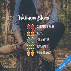 Wellness Blend - Essential Oil Diffuser Blend