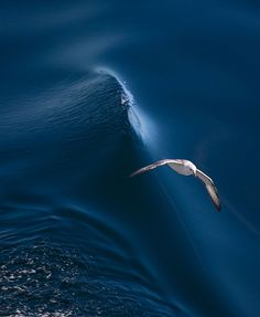 Above The Wave by Vyacheslav