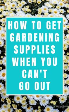 How to improvise garden supplies from things you already have - perfect for when you can't get to the shops! Planting Bulbs, Planting Flowers, Gardening Supplies, Gardening Tips, Recipe Drawing, Ancient Chinese Architecture, Vintage Festival, Plant Labels, Mini Greenhouse