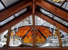 Удивительной красоты, огромная бабочка на фоне заснеженного леса.¦ Фото: mymodernmet.com.