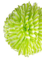 green paper pompoms  #worldcup #party #soccer #birthday