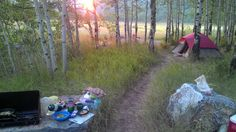 Nearly free camping in the Unita Mountains east of Salt Lake City. There are a number of flat, grassy areas surrounded by aspen forests 10-100 yards off the road. Many can accommodate large rigs.