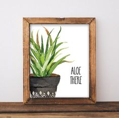 Succulent Print - Cactus Print - Aloe Print - Cactus Decor by LittleCreekCreative on Etsy