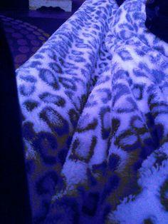 Blue camra cheater blanket