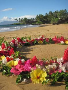 Flower circle in Maui
