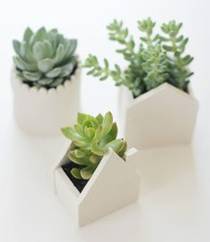 10 DIY Planter Projects.