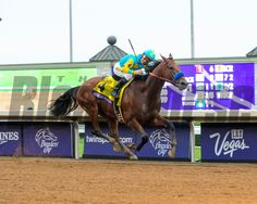 American Pharoah with jockey Victor Espinoza wins Classic at Keeneland for Breeders' Cup on Oct. 31, 2015. Anne M. Eberhardt Photo