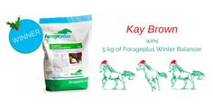Forageplus Xmas Gift Give Away Day Three ..... will it be you.... sign up to WIN intelligent horse nutrition and lots of other horsey prizes