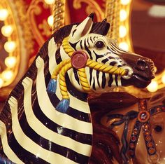Carousel Zebra at the Stanislaus County Fair by Megan Collin, via Flickr.