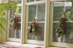 Gorgeous DIY succulent wreaths.  The tutorial is awesome!