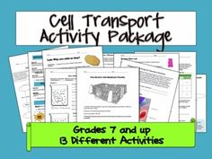 Cell Transport Worksheet (Osmosis, Diffusion) | A 4, Will have and ...