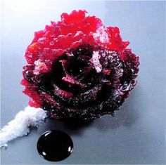 World's Greatest Chef Ferran Adrià and the Food of El Bulli: Rose of Beet with Mandarin & Almond Sherbet