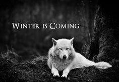 Ghost ~ Game of Thrones