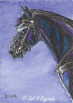 ACEO Original Watercolor Art Friesian Horse in Harness by Carpiss, $9.99