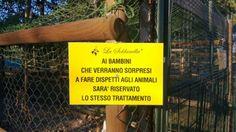 #Bambini, #animali e dispetti...