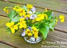 Nancy Baggett's Kitchenlane: Spectacular Violet and Leafy Greens Salad, Plus a Quick Violet Vinaigrette