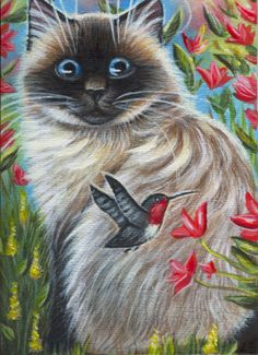 Ragdoll Cat & Hummingbird - Acrylic Painting  that face looks like mine cat  when he is playful :-)