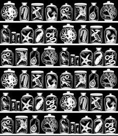 Curiosity Cabinet pattern design