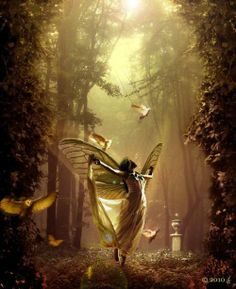 Gorgeous traditional fantasy shot of fairy in forest in autumn colours Fairy Dust, Fairy Land, Fairy Tales, Fantasy Images, Fantasy Art, Art Steampunk, Attractive Wallpapers, Fairy Wallpaper, Forest Wallpaper