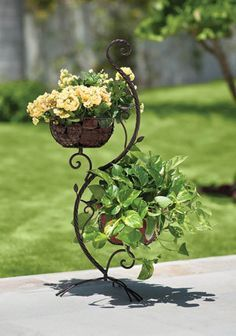 Love this adorable wrought iron plant hanger! Visit stonecountyironworks.com for more wrought iron designs!