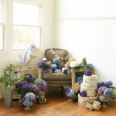 パーティに来てくれたゲストをお迎えするウェルカムスペースには、ふたりの好きな花や雑貨をスタイリング♪ たとえばアジサイやアンティーク家具でこんなにおしゃれに。
