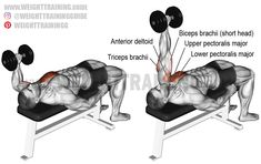 One-arm hammer-grip dumbbell bench press. A unilateral compound exercise. Dynamic stabilizer: Biceps Brachii (short head only). Best Shoulder Workout, Best Chest Workout, Chest Workouts, Chest Exercises, Fitness Workouts, Weight Training Workouts, Power Training, Compound Exercises, Overhead Press
