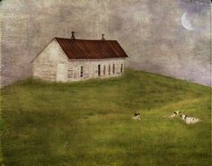 Under Cover  by jamie heiden, via Flickr  bathroom