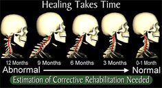 Trigo Health Chiropractic - Articles of Interest