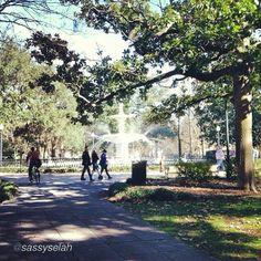 Beautiful January day in Savannah, GA