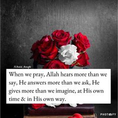 The solution of every problem is in Sabr (Patience) & Istighfar (seeking forgiveness). Allah Quotes, Muslim Quotes, Religious Quotes, Beautiful Islamic Quotes, Islamic Inspirational Quotes, Arabic Quotes, Classy Women Quotes, Birthday Wishes For Daughter, Islam Marriage