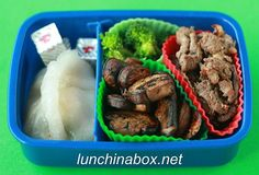 Lunch in a box website  great bento box meal ideas