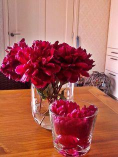 @ h bloemen uit eigentuin!