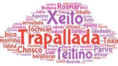 Al ver cómo «sapoconcho» se ponía de moda gracias a «Operación Triunfo», esta usuaria quiso reivindicar todas las expresiones que los gallegos usamos aún cuando hablamos en castellano Language, Teaching, Writing, Humor, Sayings, Quotes, Facebook, City, Truths