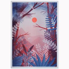 Canaima · Risograph by Hvass and Hannibal