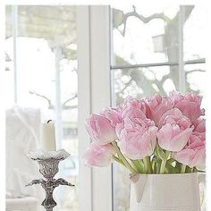 Pink tulips oh my hell just remembered what I left at the kids my birthday tulips damn. Beautiful Flower Arrangements, Love Flowers, Beautiful Flowers, Shabby Flowers, Narcisse, Tulip Wedding, Tulip Bouquet, Pink Tulips, Rose Cottage