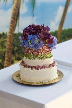 Lily Vanilli Cake Fight  www.lilyvanilli.com
