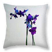 Throw Pillow - Decorative Orchid Photo A6517 Throw Pillow by Mas Art Studio, #ThrowPillow #Pillow #Modern #Orchid #Floral #MasArtStudio  #WallArt #ArtForSale #MarthaAnnSanchez #Botanical  #Decor #Interiors #ArtLoversOnline #CanvasPrint  #GicleePrint #White #Color #Beautiful #New #Purple  #LivingRoomArt #BedroomArt #ChildrensRoomArt  #Wildlife #Kitchen #OfficeSafe #LaundryRoom #Art  #Office #ChildsRoom #Patio #SunRoom, Blue