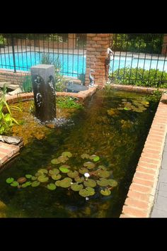 Here's one I fixed/repaired a while back. I didn't put this one in... All brick & concrete. NO bio-filter. Savio skimmer (yuck) but it's impossible to replace without tearing it ALL out! BUDGET! So we closed in the circular area & turned it into a Bog/Wetland filter. Added some plants, lighting & fish & BAM! It's actually nice, clear & very Low Maintenance now. Moral to the story - Get a good design plan BEFORE you build. And - hire a Professional Water Feature Specialist! Water Features, Pond, Concrete, Filter, Brick, Cool Designs, Budget, Patio, Fish