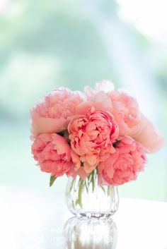 A lovely vase of delicate peonies