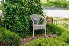 Vor ungefähr zwei Wochen hatte meine Freundin Silke ein paar Mädels zum Kaffee eingeladen, die ihre Deko- und Gartenbegeisterung teilen. An diesem sonnigen Nachmittag konnten wir wunderbar miteinander plaudern, fachsimpeln und ganz genussvoll den Garten erkunden, den Silke mit Unterstützung ihres Mannes Ralf wundervoll bepflanzt, bebaut und liebevoll dekoriert hat. …