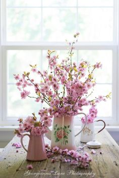 Cherry blossoms in enamel pitchers