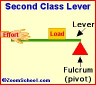 class 1 lever