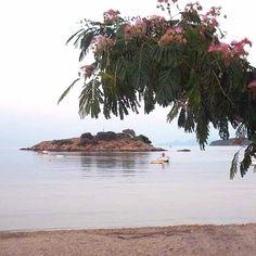 Τηγανιά λαχανικών με κουρκουμά... ο καλύτερος μπυρομεζές | Tante Kiki Beach, Water, Outdoor, Gripe Water, Outdoors, The Beach, Beaches, Outdoor Games, The Great Outdoors