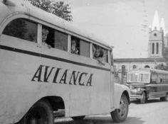 Bus de Avianca