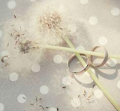 Top Dandelion Wedding Ideas And Invitations -InvitesWeddings.com