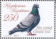 Rock Dove stamps - mainly images - gallery format
