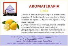 Escola Portuguesa de Feng Shui: AROMATERAPIA - LIMÃO