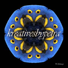 Mandala ''Papagei blau''  kreativesbypetra  #mandala #inspiration #innereruhe #spirit #papagei #ara #parrot Petra, Inspiration, Mandalas, Mosaics, Random Stuff, Canvas, Biblical Inspiration, Inspirational, Inhalation