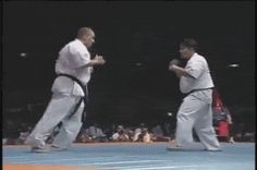 Karate: Ura-Mawashi-Geri (Spinning Hook Kick)